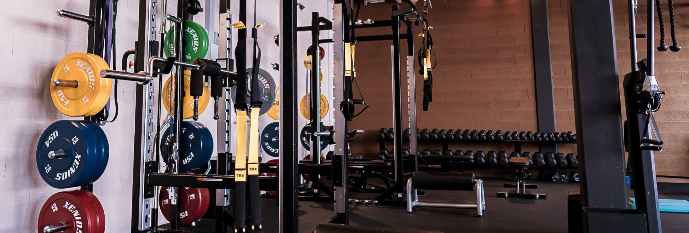 Programme musculation, personal trainer fitness à Lausanne